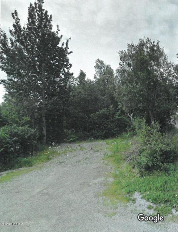 12801 Midori Dr., Anchorage, AK 99516 Photo 1
