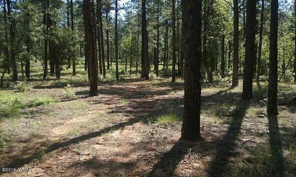 4 Ac. Off Osprey Ln., Pinetop, AZ 85935 Photo 3