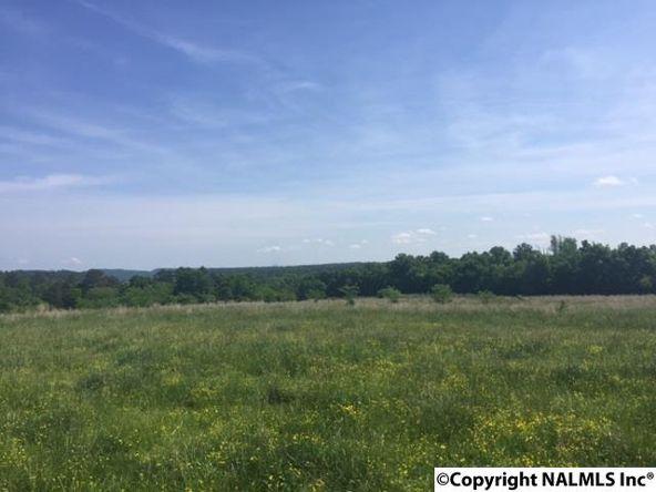 1295 Martling Gap Rd., Albertville, AL 35951 Photo 7