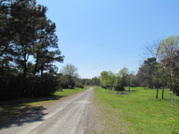 Home for sale: 993 Blackbear Dr., Edisto Island, SC 29438