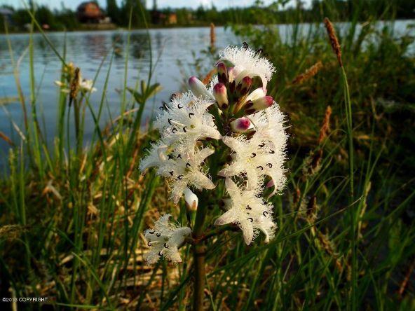 13776 W. Airigin Dr., Big Lake, AK 99652 Photo 9