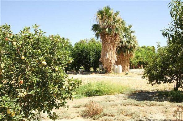 80865 Vista Bonita Trail, La Quinta, CA 92253 Photo 28