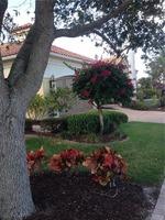 Home for sale: 126 S.E. Se Bella Strano, Port Saint Lucie, FL 34984