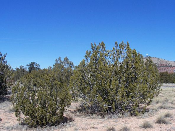 27145 W. Fort Rock Rd., Seligman, AZ 86337 Photo 6