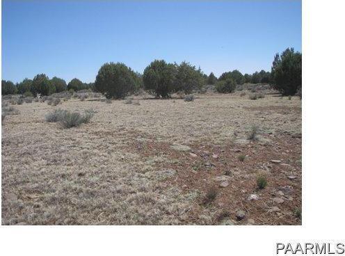 292 Sabrina, Ash Fork, AZ 86320 Photo 2