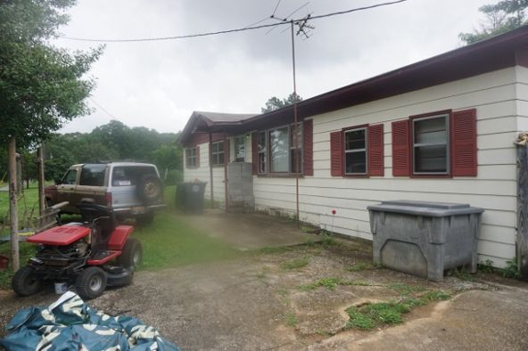 233 County Rd. 375, Moulton, AL 35650 Photo 3