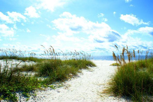 4851 Wharf Pkwy, Orange Beach, AL 36535 Photo 33