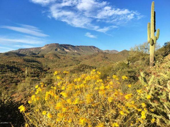 45043 N. Cottonwood Canyon Rd., Cave Creek, AZ 85331 Photo 1
