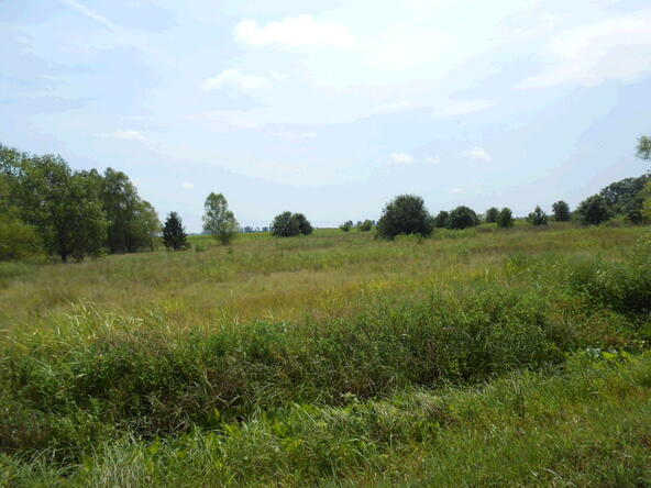 3.33 Acres Cr 945, Jonesboro, AR 72401 Photo 5