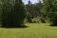 Home for sale: 3960 Blue Rd., Tuscumbia, AL 35674