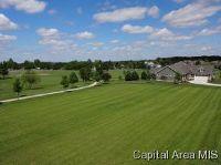 Home for sale: 920 Chestnut Oak Cir., Williamsville, IL 62693