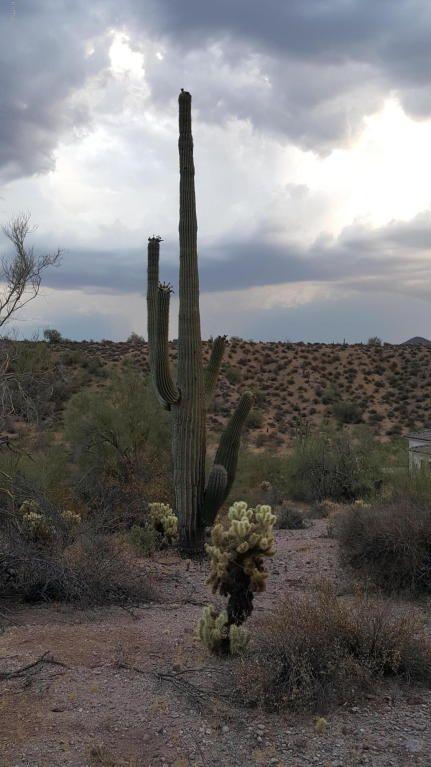 14717 N. El Camino Dorado St., Fort Mcdowell, AZ 85264 Photo 9