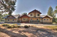 Home for sale: 4505 Bushwacker Ln., Pollock Pines, CA 95726