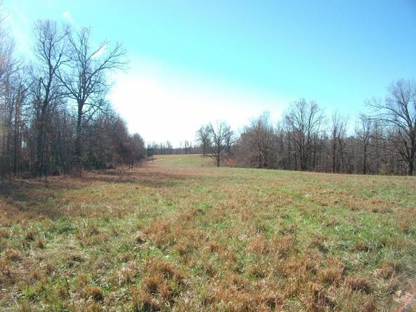 1059 Pleasant Run Rd., Mammoth Spring, AR 72554 Photo 18