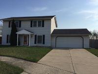 Home for sale: 5251 Drake Ln., Matteson, IL 60443