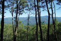 Home for sale: Lot 30 High Line Rd., Sylva, NC 28779
