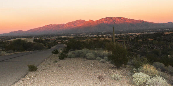 5810 N. Abington, Tucson, AZ 85743 Photo 4