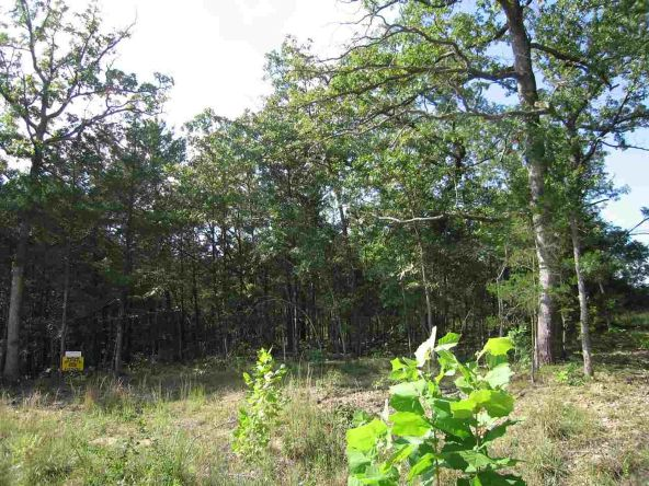Lot 15 Sargent Pepper Dr., Flippin, AR 72634 Photo 1