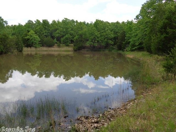 2606 Eagle Nest Rd., Ash Flat, AR 72513 Photo 30