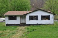 Home for sale: 285 Carlin Addition Rd., Smithfield, WV 26437