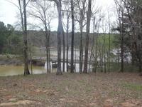 Home for sale: 0 Alt Hwy. 97, Abbeville, AL 36310