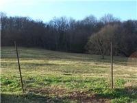 Home for sale: 0 Pierce Rd., Pulaski, TN 38478