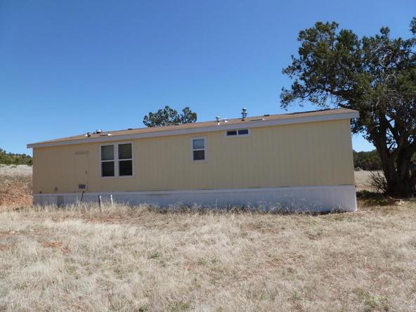 42100 N. Dead Tree Rd., Seligman, AZ 86337 Photo 18