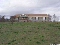 Home for sale: 1525 County Hwy. 48, Blountsville, AL 35031