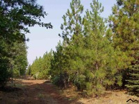 Home for sale: 000 Ponderosa Way, Paynes Creek, CA 96075