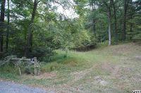 Home for sale: 740 Upper Buck Ridge Rd., Blain, PA 17006