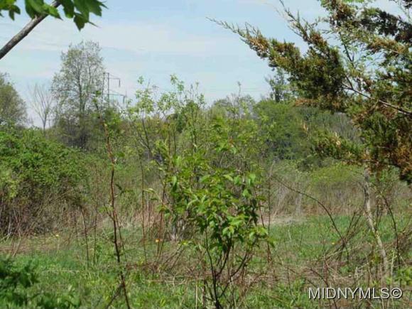 Keyes Rd., Deerfield, NY 13502 Photo 4