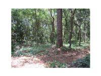Home for sale: Orange Ct., Mount Dora, FL 32757
