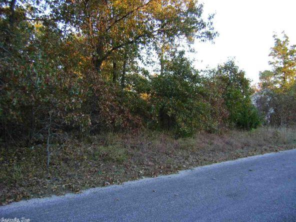1010 & 1102 Cook Rd., Horseshoe Bend, AR 72512 Photo 16