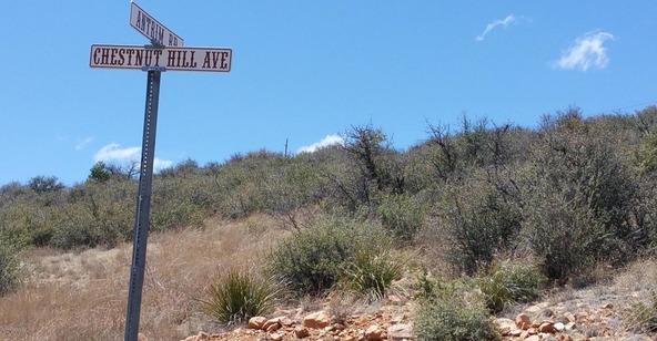 9570 E. Chestnut Hill Avenue, Dewey, AZ 86327 Photo 22