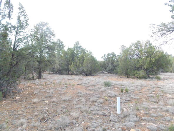 2961 Homestead Dr., Overgaard, AZ 85933 Photo 7