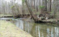 Home for sale: 291 Creekside Dr., Ellijay, GA 30540