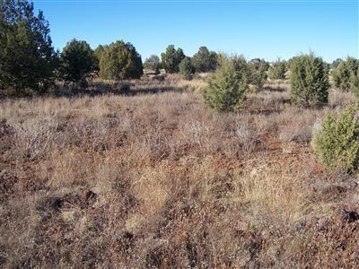 1357 W. Pinto Dr., Ash Fork, AZ 86320 Photo 1
