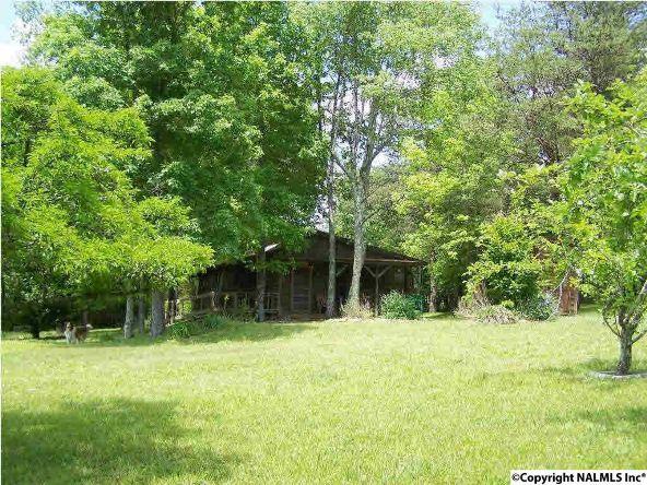 158 County Rd. 944, Mentone, AL 35984 Photo 4