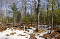 Home for sale: Lot A On Columbus Rd., Conover, WI 54519
