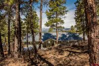 Home for sale: 910 Easy St., Pagosa Springs, CO 81147