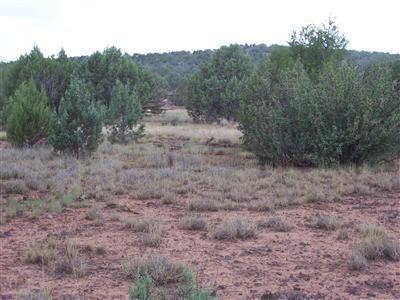 1805 W. Cumberland Parcel J Rd., Ash Fork, AZ 86320 Photo 15