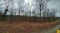 Home for sale: Lot 12, 13, 14 Antler Dr., Warsaw, MO 65355