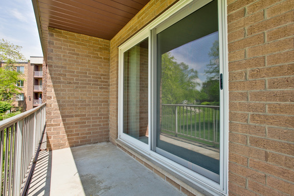 909 East Kenilworth Avenue, Palatine, IL 60074 Photo 9