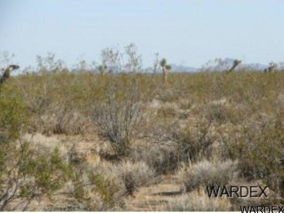 Par 2097 Wild Bill Rd., Yucca, AZ 86438 Photo 8