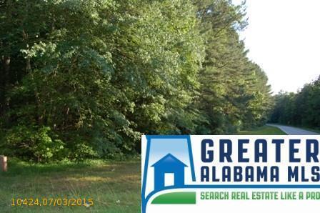 3 Rock Creek Co Rd. 4312, Wedowee, AL 36278 Photo 5