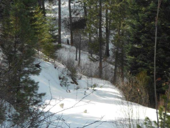 Lot 32 Castle Mountain Creek Blk 5, Garden Valley, ID 83622 Photo 1