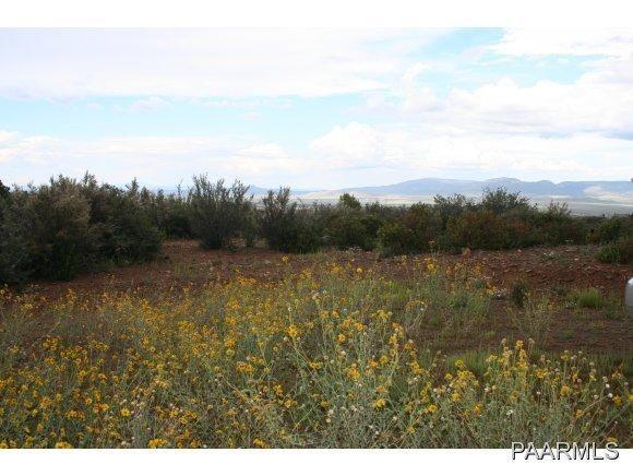 400 N. Flying Fox Trail, Prescott, AZ 86303 Photo 4