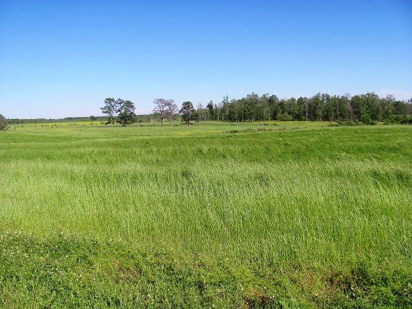 1887 County Rd. 49, Dawson, AL 35963 Photo 41