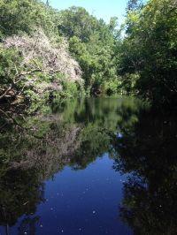 Home for sale: 66 River Terrace, Sopchoppy, FL 32327