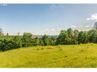 Home for sale: 34175 N.E. Wilsonville Rd., Newberg, OR 97132